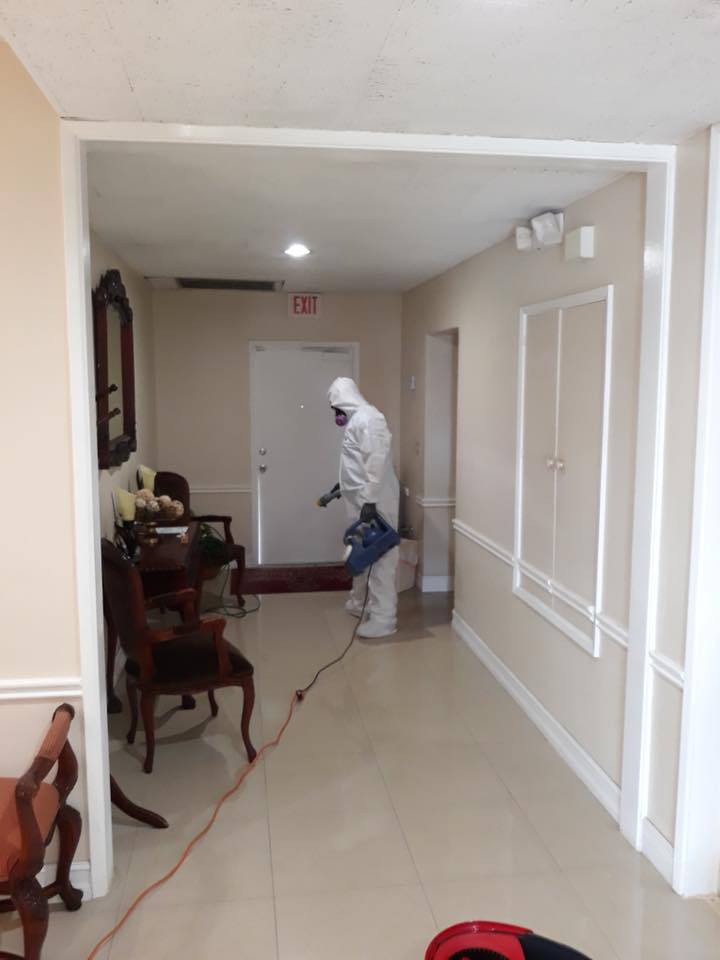 House Sanitizing Package - Up to 5000 SQ FT.